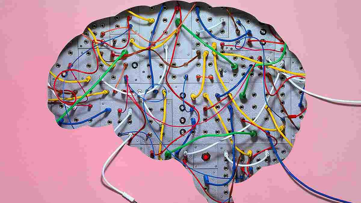 Trening mozga: Zanimljive aktivnosti koje jačaju um