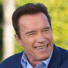 Nova mušica nazvana po Arnoldu Schwarzeneggeru