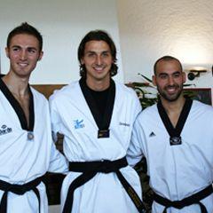 Kako je taekwondo pomogao Zlatanu Ibrahimoviću