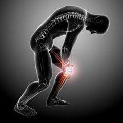 Obloge za liječenje bolova u koljenima i zglobovim