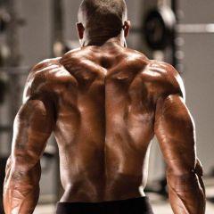 Slijeganje ramenima: Put do impresivnih trapeza