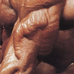 Greške koje pravite u treningu tricepsa