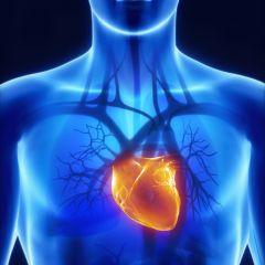 Kako zaštititi srce u osam jednostavnih koraka