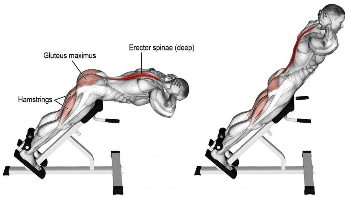 Vježbe za snažna leđa uz koje bolovi postaju prošlost